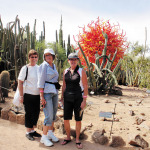 Bonnie Hokanson, Janice Sparks and Alice Whistler enjoying Chihuly in the Garden.