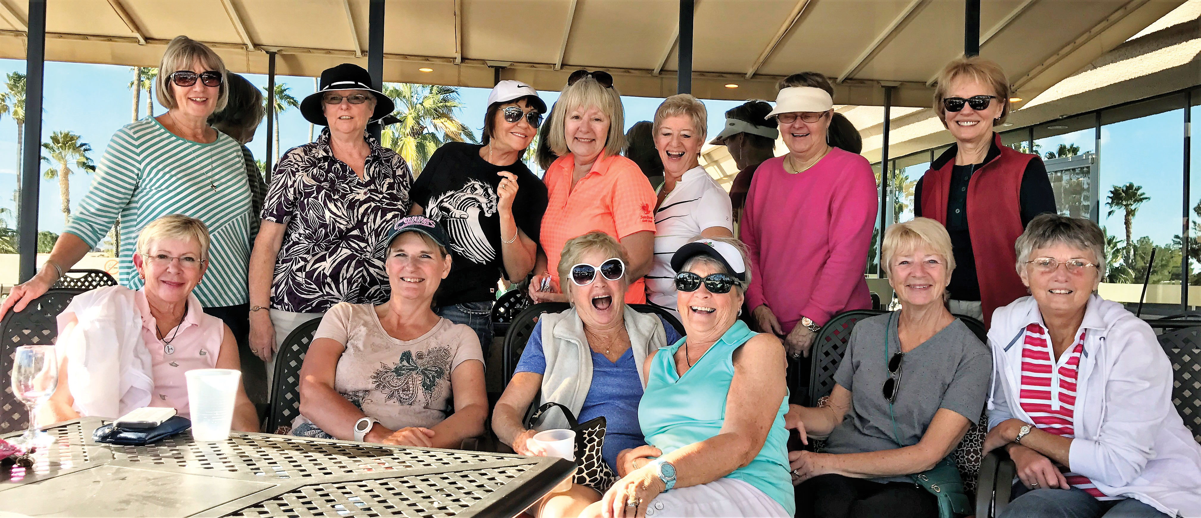The Driving Divas group has been practicing for the tournament. Back row: Nicki Koller, Fran Pease, Marnie Copping, Judy Cockrell, Jean Pritchard, Marcia Sanders and Mary Bixby. Front row: Alice Whistler, Suzanne Popelka, Nancy DeBoer, Marki Wratten, Jan Sieth and Maggie Seideman.